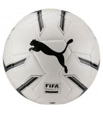 Puma 2.2 Elite FIFA Match Ball