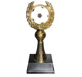 Soccer Merit Award Trophy