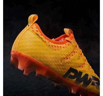 Puma evoPower Vigor 1 FG Boot