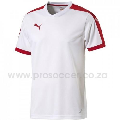 Puma Pitch Soccer Shirts (14 Pack) a52b635b7
