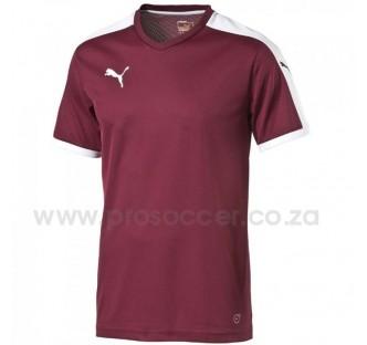 Puma Pitch Soccer Shirts (14 Pack)