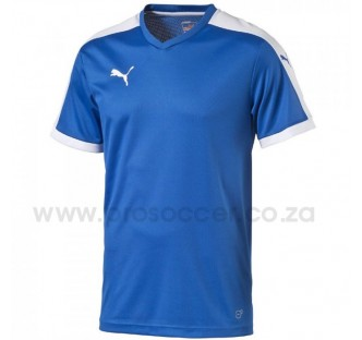 Puma Pitch Soccer Shirts (14 Pack)