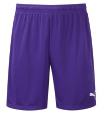 Puma Adreno Team Shorts - 14 Pack