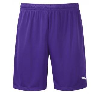 Puma Adreno Team Shorts - 14 Pack