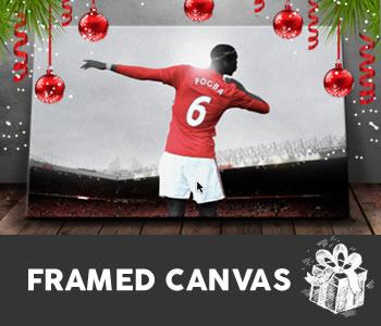 See our range of framed canvases...